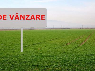 Teren cu PUZ aprobat   1062 mp   18.32 front   zona strazii Campului!